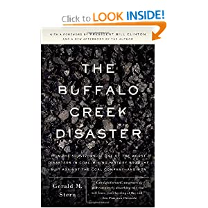 The Buffalo Creek Disaster: How the Survivors of One of the Worst Disasters in Coal-Mining History Brought... by Gerald M. Stern