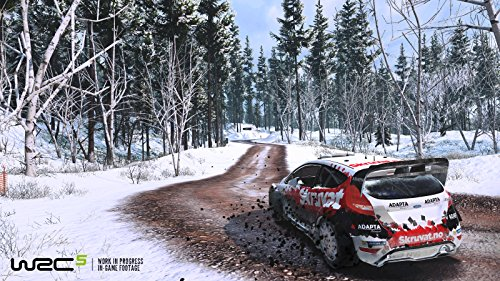 WRC 5  screenshot
