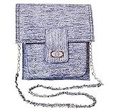 Chalissa Girl's Silver Shine Sling Bag