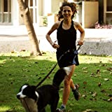 Running Dog Leash Hands Free - Including LED Light. Great for Walking, Running, Biking and Jogging (Black).