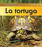 La tortuga (El ciclo de vida) (Spanish Edition)