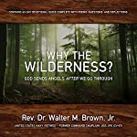Why the Wilderness?: God Sends Angels After We Go Through!   Rev. Dr. Walter Brown Jr.