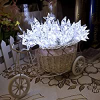 Lychee 13 ft 4m 40LED Operated Outdoor and Indoor Battery Five-pointed Star RGB String Lights With 2 Functions for Room Home Garden Christmas Party Decoration by Lychee