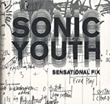 img - for Sonic Youth: Sensational Fix book / textbook / text book