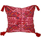 Laura Luna Textiles LL13A-221 Clochi Pillow, 20-Inch by 20-Inch