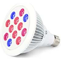 1byone LED Hydroponic 12-watt Light Bulb