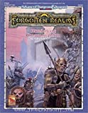 Hordes of Dragonspear, 2nd Edition (Advanced Dungeons & Dragons / Forgotten Realms, Module FRQ2) (1560763337) by Connors, William W.