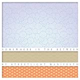 Streetlight Manifesto Somewhere In The Between [VINYL]