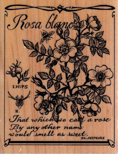Rose Botanical Wood Mounted Rubber Stamp (K3134)
