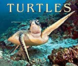 img - for Turtles 2015 book / textbook / text book
