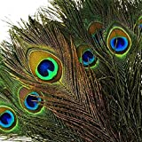 DGM946 100pcs Natural Peacock Feathers with Eye Peacock Tail Feathers (Color: Green, Tamaño: Other)
