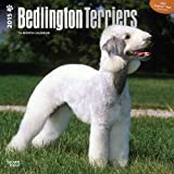 BT Bedlington Terriers 2015 Wall