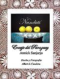 Ñandutí, encaje del Paraguay (Spanish Edition)