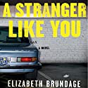 A Stranger Like You Audiobook by Elizabeth Brundage Narrated by Ellen Archer