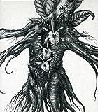 IV - Mandragora by Botanist (2013-02-19)