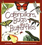 Caterpillars, Bugs & Butterflies: Take Along Guide (Take Along Guides)