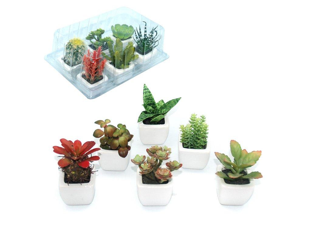 plantes succulentes artificielles