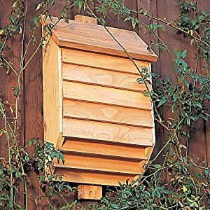 Bat Conservatory House-helps reduce mosquitos naturally