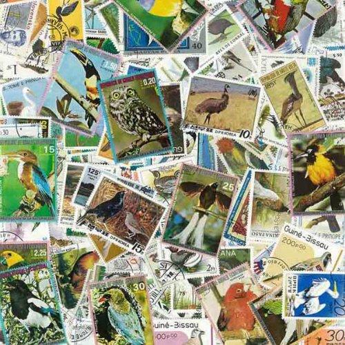 uccelli-francobolli-diversi-1000