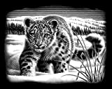 Reeves Snow Leopard Scraperfoil Artwork, Silver