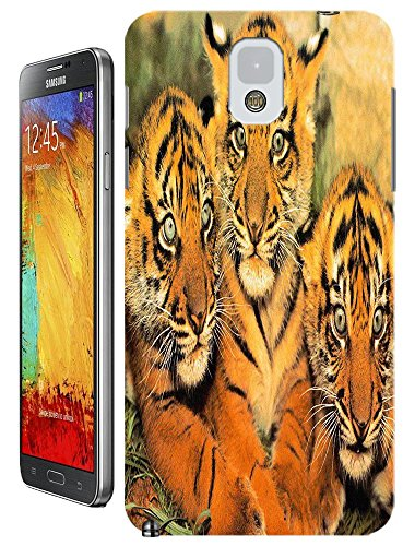 Lovely Power Tigers Cases Covers Phone Hard Back Cases Beautiful Nice Cute Animal Hot Selling Cell Phone Cases For Samsung Galaxy Note 3 # 8 front-52198