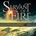 Servant of Fire Audiobook by D. K. Holmberg Narrated by Nicholas Techosky