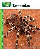 Michael Andreas Jacobi Tarantulas (Animal Planet Pet Care Library)