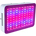 Annt Hanging 300-watt LED Grow Light for Indoor Plants