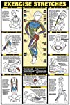 Exercise Stretches 24 X 36 Laminated Chart