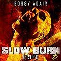 Slow Burn: Grind, Book 8: Slow Burn Zombie Apocalypse Series (       UNABRIDGED) by Bobby Adair Narrated by Sean Runnette