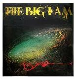 The Big I Am (0671635050) by Steadman, Ralph