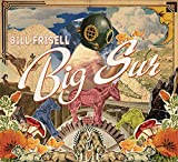 Big Sur by Bill Frisell (2013-06-18)
