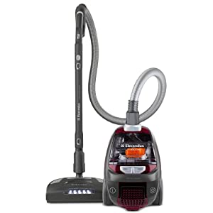 Electrolux UltraActive DeepClean Bagless Canister Vacuum Review