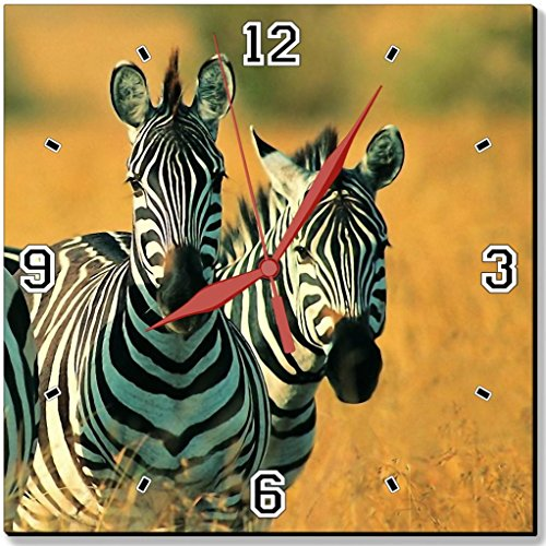 Cute Black And White Zebras Stripes Prairie Yellow Grass Land Punktail'S Collections 10 Inch Quartz Plastic Wall Square Clock Customized Made To Order