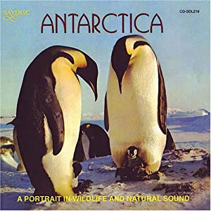 Antarctica: Portrait in Wildlife & Natural Sound