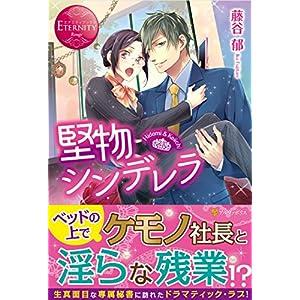 堅物シンデレラ―Hidemi & Keiichi (エタニティブックス Rouge)
