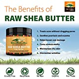 Raw-Shea-Butter-16-oz-with-RECIPE-EBOOK-Perfect-for-All-Your-DIY-Home-Recipes-Like-Soap-Making-Lotion-Shampoo-Lip-Balm-and-Hand-Cream-Organic-Unrefined-Ivory-Shea-for-Soft-Skin-and-Hair
