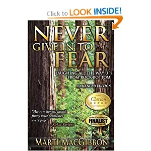 Never Give in to Fear: Laughing All the Way Up From Rock Bottom read online