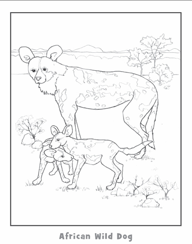 african wild dog coloring pages photo5