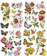 4 St�ck: XL Fensterbilder - Blumen Rosen Schmetterlinge Mohn Sonnenblumen - statisch haftend - Sticker Fenstersticker Aufkleber selbstklebend wiederverwendbar