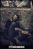 The Walking Dead Poster Gefangen - Poster Großformat (91,5cm x 61cm) + 1 Überraschungsposter dazu!