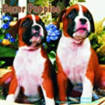 Boxer Puppies Calendar - 2015 Wall ca...