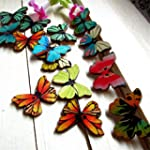 SONGQEE(TM) Pack of 50 Butterfly Shap...