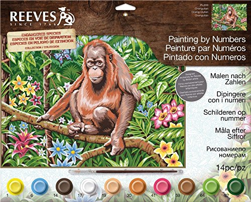 Reeves Large Acrylic Painting By Numbers - Orangutan