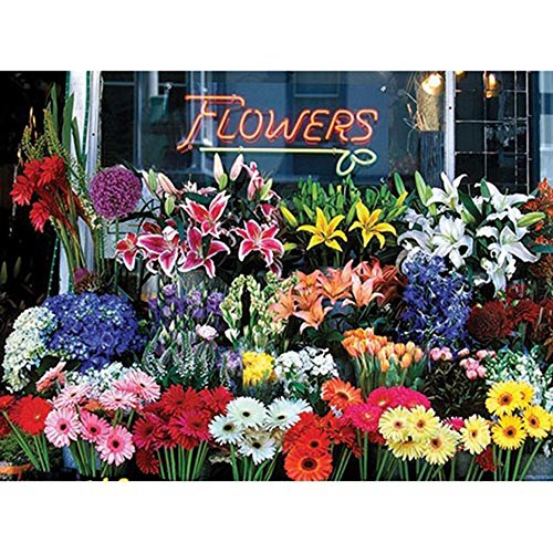 Colorluxe 1000 Piece Puzzle - Flower Shop