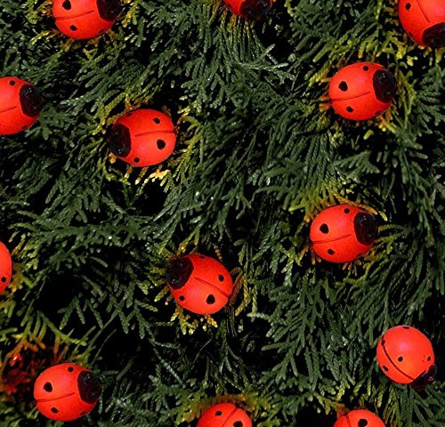 Outdoor Garden Ladybug Ladybird Solar Powered String Lights (16)