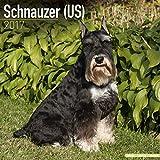 Schnauzer (Us) Calendar 2017 - Dog Breed Calendar - Wall Calendar 2016-2017
