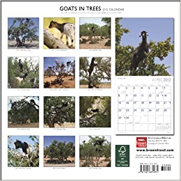 Goats In Trees Calendar 2012 Goats In Trees ...
