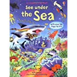 Under the Sea (See Inside) (Usborne See Inside)by Kate Davies