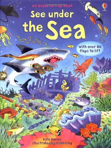 See Under The Sea (Usborne See Inside)